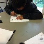 A teen from BFCC program draws leaves picked at the park under magnification